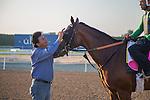 MEYDAN,DUBAI-MARCH 25: Frank Conversation and his assistant trainer,Leandro Mora, at Meydan Racecourse on March 25,2016 in Meydan,Dubai (Photo by Kaz Ishida)