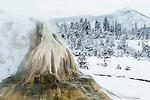 Geyser in winter, White Elephant Back Terrace, Mammoth Hot Springs, Yellowstone National Park, Wyoming