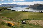 New Zealand, South Island, Otago region, Wanaka: Rippon Vineyard on Lake Wanaka | Neuseeland, Suedinsel, Region Otago, Wanaka: Rippon Weingut am Lake Wanaka