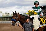 MAR 07: Combatant and Joel Rosario wins the Santa Anita Handicap at Santa Anita Park in Arcadia, California on March 7, 2020. Evers/Eclipse Sportswire/CSM
