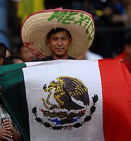 Mexican fan during the game, DC United defeated Club America 1-0 to secure one of the two semifinal berths in SuperLiga group B, at RFK Stadium in Washington DC, Sunday July 29, 2007.