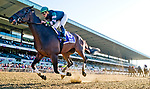 ELMONT, NY - JULY 09: Diversify #10, ridden by Irad Otriz Jr., wins the Suburban Stakes during the Stars and Stripes Racing Festival at Belmont Park on July 7, 2018 in Elmont, New York. (Photo by Scott Serio/Eclipse Sportswire/Getty Images)
