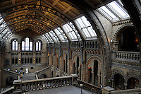 LONDON-UK- 24-05-2008. Royal Albert Hall, Museo de Historia Natural en Londres.; Royal Albert Hall, Natural History Museum, London. Photo: VizzorImage
