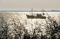 Europe/France/Aquitaine/33/Gironde/Pauillac: Bateau de pêche sur les bords de la Gironde