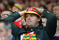 A Wales supporter watches the game in disappointment after conceding a goal during the FIFA World Cup Qualifier Group D match between Wales and Republic of Ireland at The Cardiff City Stadium, Wales, UK. Monday 09 October 2017