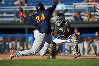 Batavia Muckdogs catcher Pablo Garcia (7) looks to tag Bladimil Franco (34) sliding home during a game against the State College Spikes on June 23, 2016 at Dwyer Stadium in Batavia, New York.  State College defeated Batavia 8-4.  (Mike Janes/Four Seam Images)