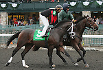 Bashart and John Velazquez in the 23rd running of the Bourbon Grade 3 $150,000 at Keeneland Race Course.   October 06, 2013.