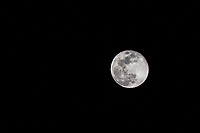 The March 2018 blue moon, the full sap moon, one of the various Native American names for the March full moon.