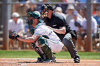 Dartmouth Big Green catcher Kyle Holbrook (9) and the home plate umpire await the pitch during a game against the Villanova Wildcats on March 3, 2018 at North Charlotte Regional Park in Port Charlotte, Florida.  Dartmouth defeated Villanova 12-7.  (Mike Janes/Four Seam Images)