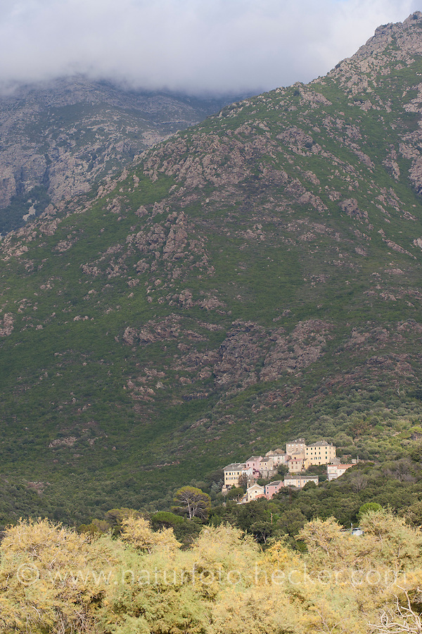 Bergdorf, Dorf auf Korsika, Frankreich. Mountain village, Corsica, France