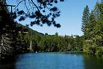 FB-S152  Donner Creek in summer