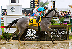 BALTIMORE, MD,  MAY 18: Red Ruby, #4, ridden by Paco Lopez, wins the Black-eyed Susan Stakes at Pimlico Racecource on May 18, 2018 in Baltimore, Maryland. (Photo by Sue Kawczynski/Eclipse Sportswire/Getty Images)