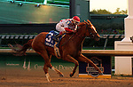 LOUISVILLE, KY -JUNE 18: Paid Up Subscriber (Candy Ride x Shriek, by Street Cry, ridden by Ricardo Santana Jr.) wins the 41st running of the G2 Fleur de Lis Handicap at Churchill Downs, Louisville, Kentucky. She is owned by Klaravich Stables Inc. (Seth Klarman) and William H. Lawrence and trained by Albert M. Stall Jr.<br />  (Photo by Mary M. Meek/Eclipse Sportswire/Getty Images)