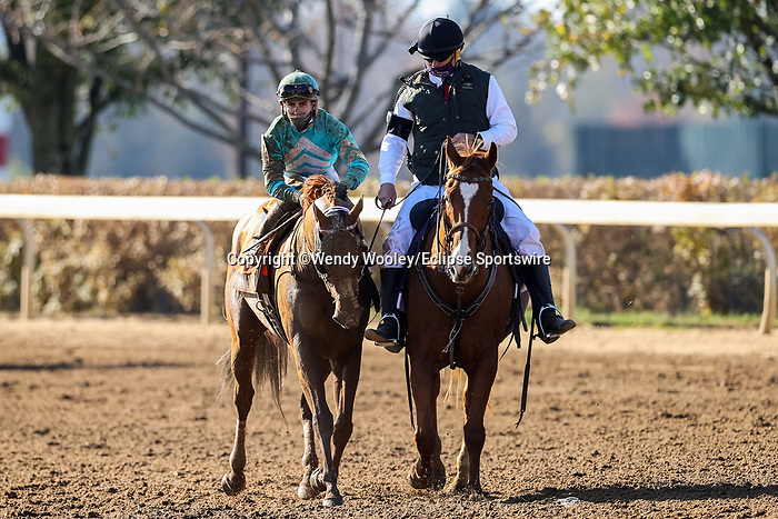 November 7, 2020 : Whitmore, ridden by Irad Ortiz, Jr., wins the Sprint on Breeders' Cup Championship Saturday at Keeneland Race Course in Lexington, Kentucky on November 7, 2020. Wendy Wooley/Breeders' Cup/Eclipse Sportswire/CSM
