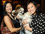"""Christine Ho with Maui and Leanna Tran with Cali at the """"Dog Days of Summer"""" Yappy Hour benefitting Citizens for Animal Protection and Golden Beginnings Golden Retriever Rescue at Hotel Derek Wednesday July 21,2010.(Dave Rossman/For the Chronicle)"""
