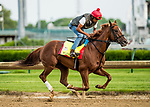 LOUISVILLE, KY - MAY 03: Flameaway, trained by Mark Casse, exercises in preparation for the Kentucky Derby at Churchill Downs on May 3, 2018 in Louisville, Kentucky. (Photo by Alex Evers/Eclipse Sportswire/Getty Images)