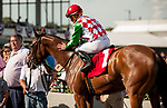 TAMPA, FL - February 10: C.S. Incharge, #1, Joel Rosario aboard for trainer Dale Romans, wins the Suncoast Stakes at Tampa Bay Downs on February 10, 2018 in Tampa, FL. (Photo by Carson Dennis/Eclipse Sportswire/Getty Images.)