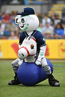Asheville Tourists mascot Mr. Moon competes in the Pony Hop Race during a game against the Augusta GreenJackets at McCormick Field on April 7, 2019 in Asheville, North Carolina. The GreenJackets  defeated the Tourists 11-2. (Tony Farlow/Four Seam Images)