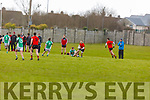 Action from Na Gaeil V Glenbeigh-Glencar in Division 2 of the County Football league on Sunday