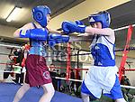 Tredagh Boxing Club