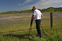 Photographer photographing spring wildflowers . Bear Valley, Colusa County, California