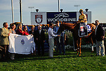Wise Dan (3) with jockey John Valazquez in the winners circle after winning the Canadian Stakes (Grade I) at Woodbine Race Course in Ontario, Canada on September 16, 2012.