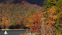 A sailboat makes its way across Tennessee's Watauga Lake on an autumn afternoon. Watauga Lake, a TVA-dammed reservoir, covers 10 square miles in two counties and is considered one of the cleanest lakes in the United States.
