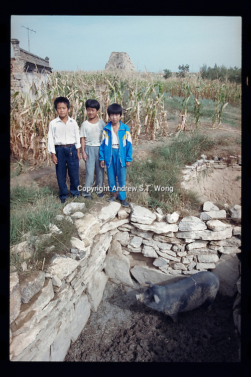 Chinese boys stand above a pigsty in Pianguan county, September 1998. Pianguan, on the border with Inner Mongolia on the Loess Plateau in northern Shanxi province, was one of the poorest counties in China with most of the residents living under the poverty line earning less than US$ 100 per person each year.