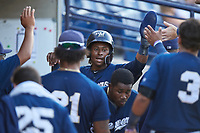 AZL Brewers Blue Orveo Saint (30) is congratulated by teammates after scoring a run during an Arizona League game against the AZL Brewers Gold on July 13, 2019 at American Family Fields of Phoenix in Phoenix, Arizona. The AZL Brewers Blue defeated the AZL Brewers Gold 6-0. (Zachary Lucy/Four Seam Images)