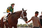 Slamarama with jockey Rosie Napravnik win at Saratoga Race Course, Saratoga Springs, New York. 08-25-2012.  Arron Haggart/Eclipse Sportswire