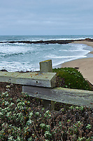 """""""Come lean on me,"""" said the fence to the traveler.  """"Lean on me, pause  and look at the sea.""""  Bean Hollow State Beach on the California Coast."""