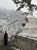 A monk looks over the mountains at an outpost of the Youning Temple near Xining, Qinghai Province 13 November 2008. Qinghai Province in western China borders Tibet and parts were the scenes of disturbance earlier this year, 2008.<br />
