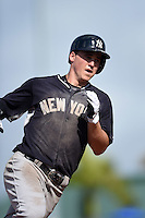 New York Yankees outfielder Tyler Austin (79) runs the bases after hitting a home run during a Spring Training game against the Pittsburgh Pirates on March 5, 2015 at McKechnie Field in Bradenton, Florida.  New York defeated Pittsburgh 2-1.  (Mike Janes/Four Seam Images)