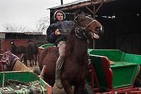 RUMAENIEN, 02.2013, Galbinas. Alin Dinu mit seinem Lieblingspferd Viorel (5). Er fuehrt ein kleines Zucht-Gestuet zusammen mit seinem Vater Florin Dinu.   Alin Dinu rides his preferred horse, Viorel, 5 y.o.. He runs a small business growing horses with his father, Florin Dinu. © Bogdan Croitoru/EST&OST