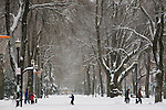 North Park Blocks in snow with people, Pearl District, Portland, Oregon
