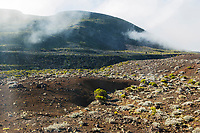 France, île de la Réunion, Parc national de La Réunion, classé Patrimoine Mondial de l'UNESCO, Route edla Plaine des Sables, paysages volcaniques  // France, Reunion island (French overseas department), Parc National de La Reunion (Reunion National Park), listed as World Heritage by UNESCO, road of Plaine des Sables, volcanic landscape