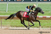 No Fruit Degroote winning at Delaware Park on 6/1/13