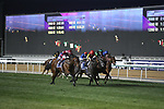 March 27, 2021: MISHRIFF (IRE) #7, during the running of the Dubai Sheema Classic on Dubai World Cup Day, Meydan Racecourse, Dubai, UAE. Shamela Hanley/Eclipse Sportswire/CSM