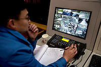 A researcher monitors camera feeds of captive born pandas in their enclosures at the Hetaoping Panda Conservation Centre.