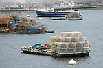Multicolored lobster traps on float, Boothbay Harbor, Maine in fog bank.
