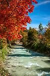 Deutschland, Bayern, Herbst im Berchtesgadener Land, Ramsau: die Ramsauer Ache | Germany, auftumn scene in Berchtesgadener Land, Ramsau: torrent Ramsauer Ache,
