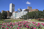 Flowers and skyscrapers seen from Civic Center Park, downtown Denver, Colorado, USA .  John offers private photo tours in Denver, Boulder and throughout Colorado. Year-round Colorado photo tours.