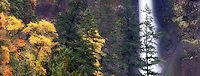 Multnomah Falls with fall color. Columbia River Gorge National Scenic Area, Oregon
