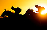 November 28, 2020: Turf racing at the Bing Crosby meet at Del Mar Racecourse in Del Mar, California on November 28, 2020. Evers/Eclipse Sportswire/CSM