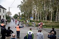 peloton coming down the Holleweg <br /> <br /> 104th Ronde van Vlaanderen 2020 (1.UWT)<br /> 1 day race from Antwerpen to Oudenaarde (BEL/243km) <br /> <br /> ©kramon