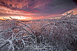 Moosic Mountain Ice Storm, Lackawanna County, Pennsylvania