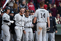 Shortstop Madison Stokes (14) of the South Carolina Gamecocks is congratulated after hitting a home run in the Reedy River Rivalry game against the Clemson Tigers on Saturday, March 3, 2018, at Fluor Field at the West End in Greenville, South Carolina. Clemson won, 5-1. (Tom Priddy/Four Seam Images)