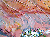 Sandtone formation and snow in North Coyote Buttes, The Wave. Paria Canyon Vermillion Cliffs Wilderness. Utah/Arizona