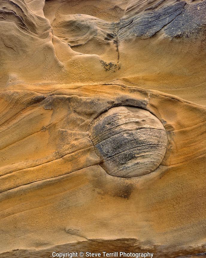 Sandstone design at Shore Acres State Park Oregon