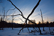 Silhouette of trees at sunset during the winter months from along the Kancamagus Highway (route 112) which is one of New England's scenic byways in the White Mountains, New Hampshire USA. This area was part of the Swift River Railroad, which was an logging railroad in operation from 1906-1916.